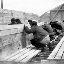 imagen-del-campo-de-concentracion-de-bram-de-agusti-centelles-archivos-estatales-mecd